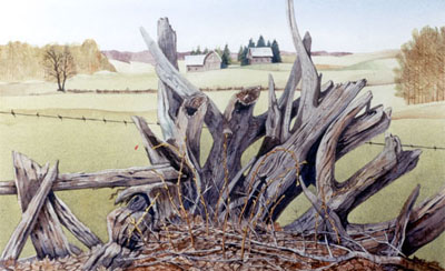 Watercolour of Stump fence, Spring, Oro Township